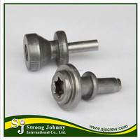 Taiwan Torx and socket drive Steel or Stainless Steel Customization spare parts