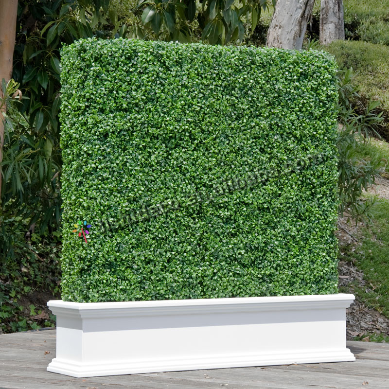 Boxwood Panel Artificial Green Hedge Fence Buy