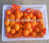 Fresh citrus fruit with good quality