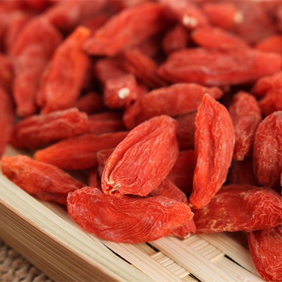 Top quality organic goji berry for sale
