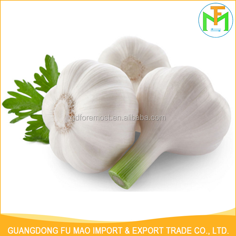 Professional Exporters Wholesale Price New Crop Farmer Organic Natural Shandong Garlic In China