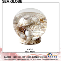 Crystal Ball Sea Life and Water Inside Free Glass Stand YSG10