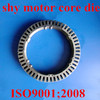 /product-detail/stamping-die-for-permanent-magnet-dc-motor-stator-rotor-60047733816.html
