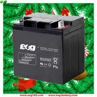UPS sealed lead acid battery 12V 24AH rechargeable agm batteries