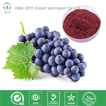 Best Selling Natural Black Currant P.E. Grape glycosides