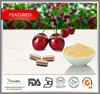 Top quality Natural Acerola cherry extract/Natural Vitamin C 17% 25% / Acerola extract Powder