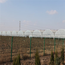 Polyethylene Agriculture Greenhouse 3 Layer Film