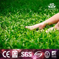 Factory manufacture various artificial grass putting green