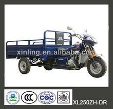 150cc 200cc 250cc close cabin cargo tricycle /closed Tricycle/ three wheel motorcycle 1-series with head cover