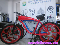 2 stroke 80cc engine kit bicycle for sale/racing bicycle on sale