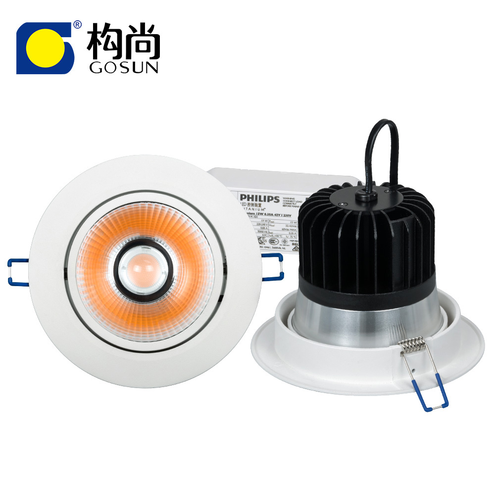 Professional CRI90/97 flicker free 6w 10w 15w 20w 30w 40w 50w 60W 70W 80w led downlight