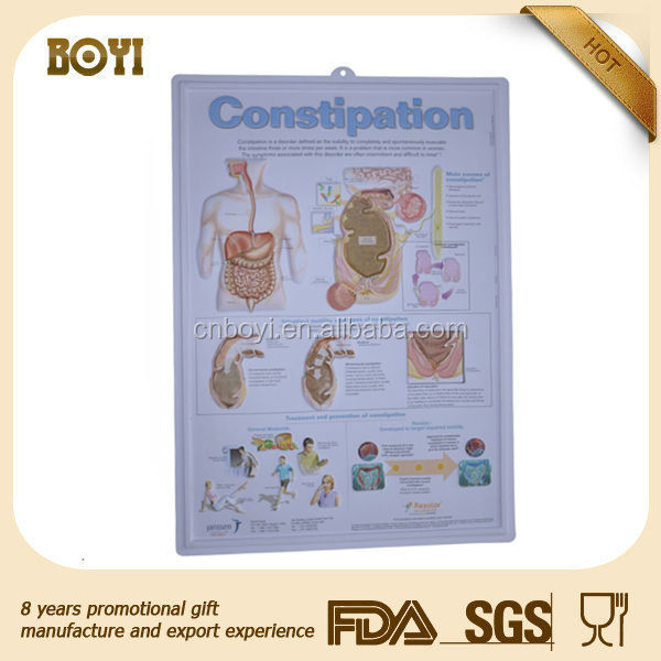 Anatomical chart, 3d embossed disease of digestive system poster, UV print constipation 3d poster