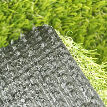 High Quality Carpet Grass,Landscape Turf Grass