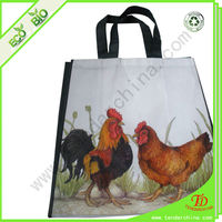 Matt Laminated Bag For Shopping Pictures Printing Non Woven Fashion Bag Wholesale