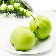Hot Sale Chinese Fruits Sweet Fresh Ya Pear 4kg/9kg/18kg Carton