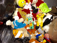 Used hard toys and Soft Toys.