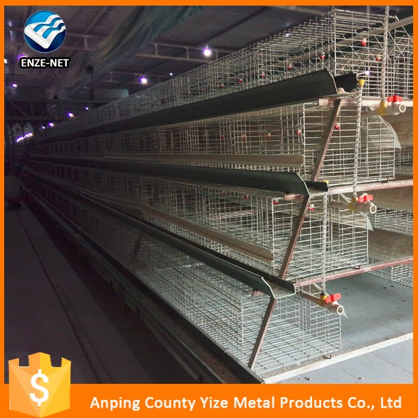 Chicken used automatic galvanized battery chicken cages laying hen/layer/egg chicken (factory price )