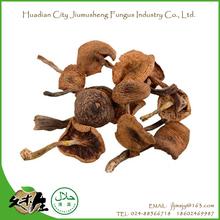 Hot selling 200g affordable price kinds of dried smooth mushrooms