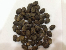 Asian seeds,chinese vegetable seeds,good quality seeds