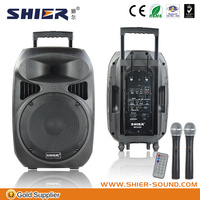 Modern portable max professional speaker system