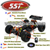 RC Brushless Buggy Pro 2 4G