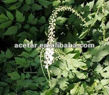 Plant extract Wild black cohosh extract,Triterpene Glycosides