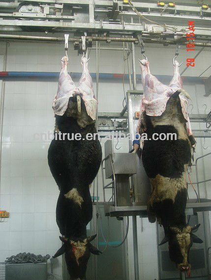 cattle/cow/beef/buffalo slaughter house equipment