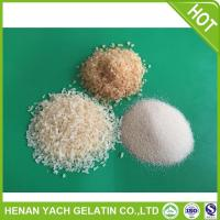 Professional lahore gelatin for wholesales