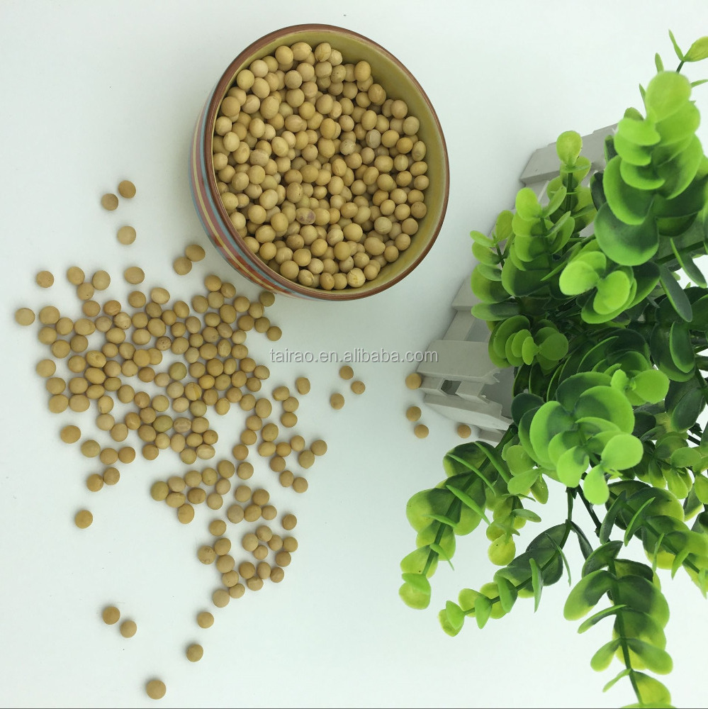 Adding protein isolated non-gmo soybean seeds for soy milk