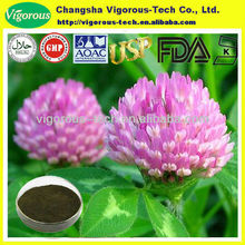 Isoflavones red clover p.e/top quality red clover extract