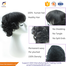 Brazilian Remy Hair Natural Hairline 180% Density Full Lace Human Hair Wigs For Black Women