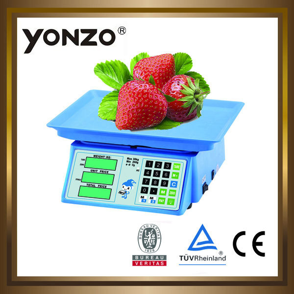 30kg mini portable weighing balance