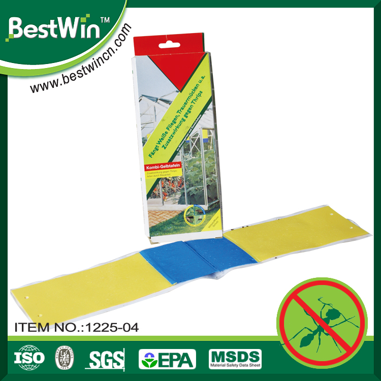 BSTW over 10 years experience strong adhesive cardboard insect trap