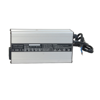 110Vac Lithium/LiFePo4/Li-Mn Battery Charger