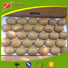 Disposable Plastic Kiwi Packaging Tray,Blister Fruit Packing Tray