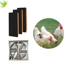 Poultry house cooling system from Manufacturer Yaoxian