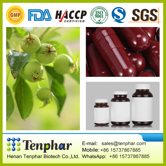 GMP Certificated Manufacture1000mg Diet Best Slimming Triphala Tablet