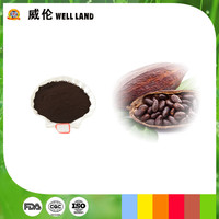 Cocoa shell extract 10E natural cacao extract color powder