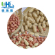 Raw Shandong peanut in shell can use peanut making machine