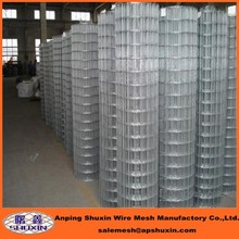 Welded Mesh Type and Fence Mesh Application 2x2 galvanized welded wire mesh in stock(SGS Factory)