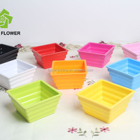 Nice Colored Wholesale Economic Garden Plastic