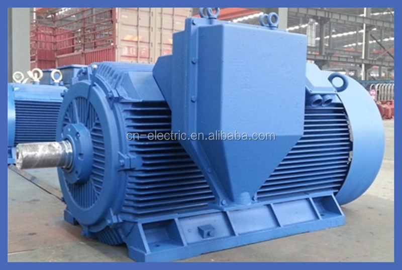 high voltage three phase TEFC squirrel cage induction motor
