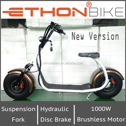 Ethon Bike 1000W powerful electric scooter with hydraulic suspension fork and disc brake