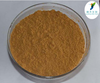 Halal&Kosher Guarana Extract/Guarana Powder/Guarana Extract Powder