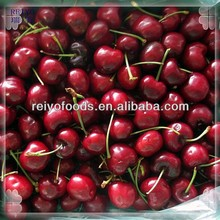 frozen sour cherry