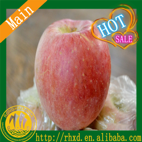 2016 shandong fresh fruits hot sale fuji apple