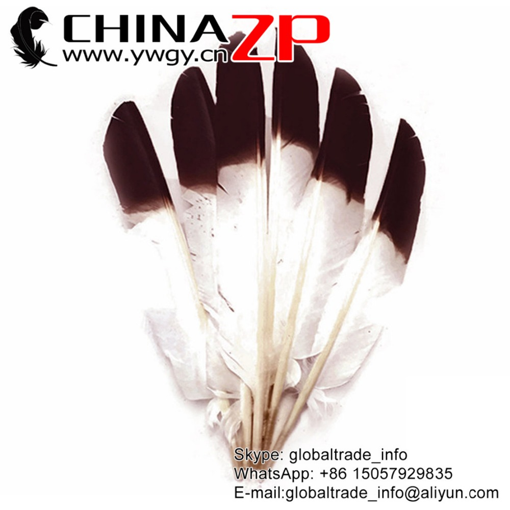 ZPDECOR Hot Selling Plumag Crafts Factory Dyed Brown Tipped Turkey Pointers Quill Large Feathers for Fashion Decorations