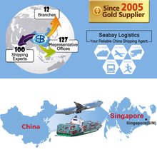 Logistics freight forwarding shipping agent servcie from china shenzhen guangzhou shanghai to singapore
