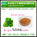 100% Natural Spinach Extract Powder