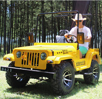 CE Approved 200cc Auto Cluth Mini Jeep Willys/electric go kart for Sale